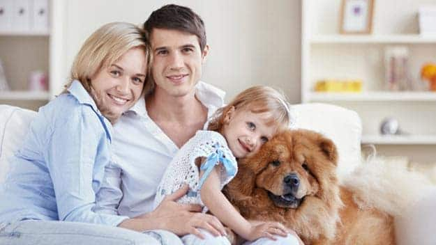 Wills & Trusts dog-young-family Direct Wills Walton-on-Thames